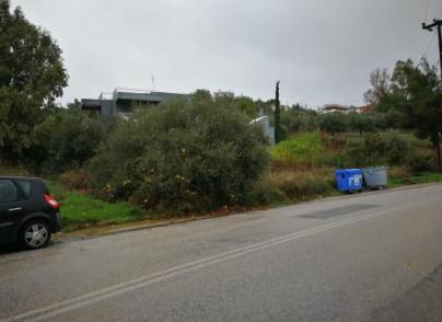 Land plot in Rafina area